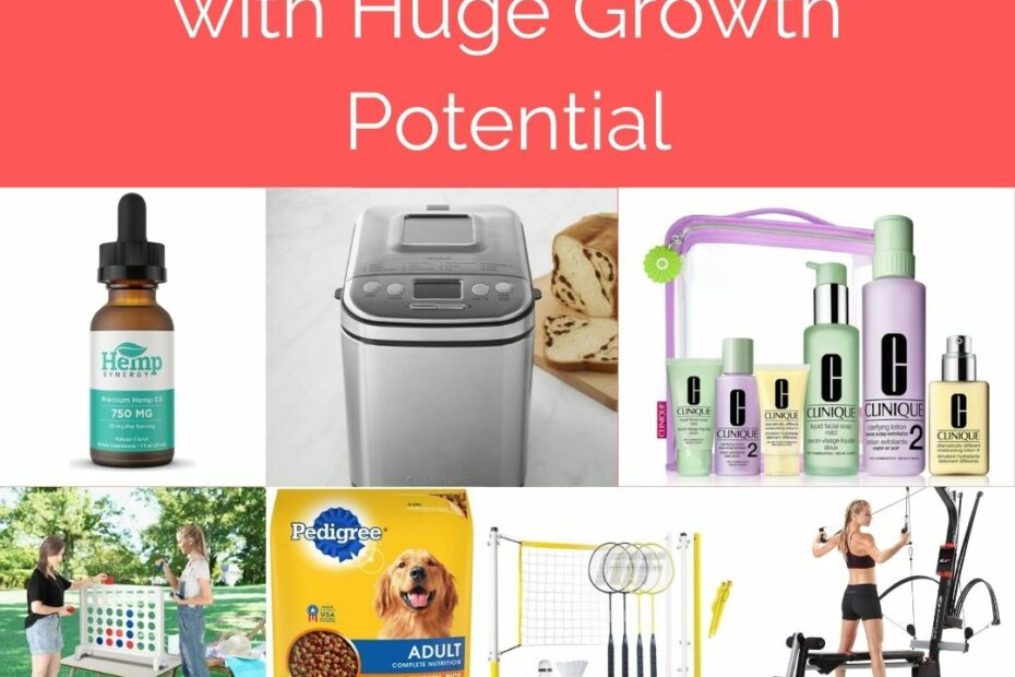 6 eCommerce Niches with HUGE Growth Potential DropshipXL
